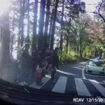 【これは見たくなかった…】日本スーパーカー協会クラブSCJの箱根芦ノ湖ツーリングにて、スーパーカー達が横断歩道を渡ろうとする家族連れの歩行者を一切優先しなかった動画が公開される【動画有】