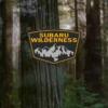 スバルの「ウィルダネス第二弾」が2021年9月2日にデビュー決定!アウトバックの次は新