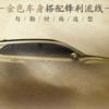 その名は「フェンランダ(锋兰达)」。広汽トヨタが新型カローラクロスの中国版を2021年