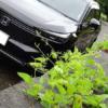 フルモデルチェンジ版・ホンダ新型ヴェゼルの2021年7月度の総実燃費を見ていこう。夏