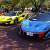 大阪万博記念公園サーキット2018に行ってきた。パレードラン出展車両は約80台、マクラ
