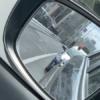 今日のプリウス…トヨタ「プリウス」が全く分からないレベルの覆面パトカーに。更にオ