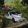 富山でのトヨタ「2000GT」倒木直撃問題。損害賠償は半額の1787万円にて和解へ